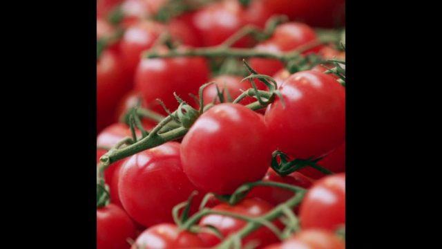 """Schlaumeier: Wieso haben wir """"Tomaten auf den Augen""""? - 10s"""