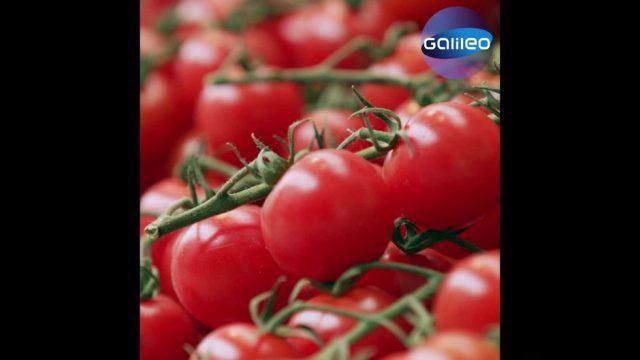 """Schlaumeier: Wieso haben wir """"Tomaten auf den Augen""""?"""