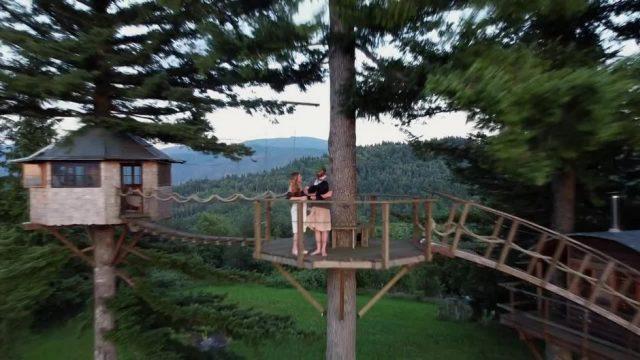 Von der Stadt in die Natur: Dieses Paar lebt in einem Baumhaus