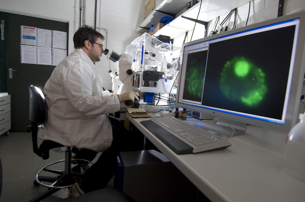 Laborant beim Mikroskopieren