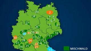 Karte: Misch- und Nadelwald in Deutschland