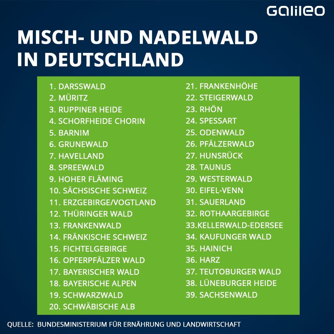 Liste: Misch- und Nadelwälder