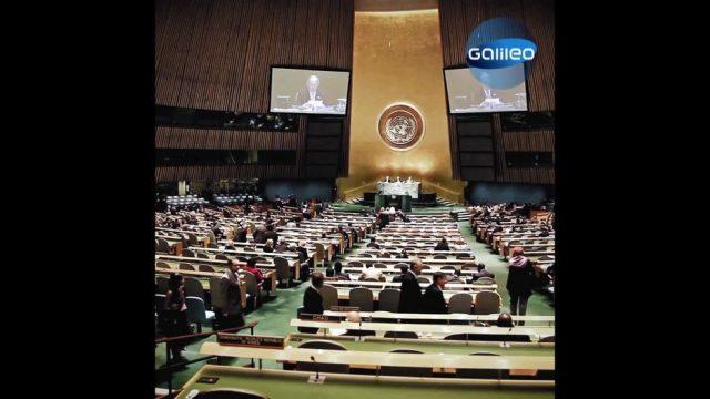United Nations: Was machen die da eigentlich?