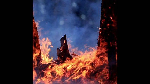 Wie breitet sich ein Waldbrand aus? - 10s