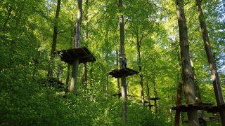 Klettergarten im Wald