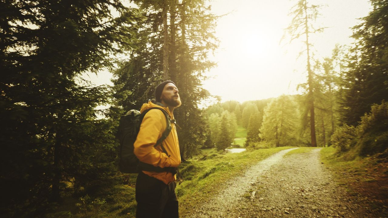 Mann spaziert durch den Wald