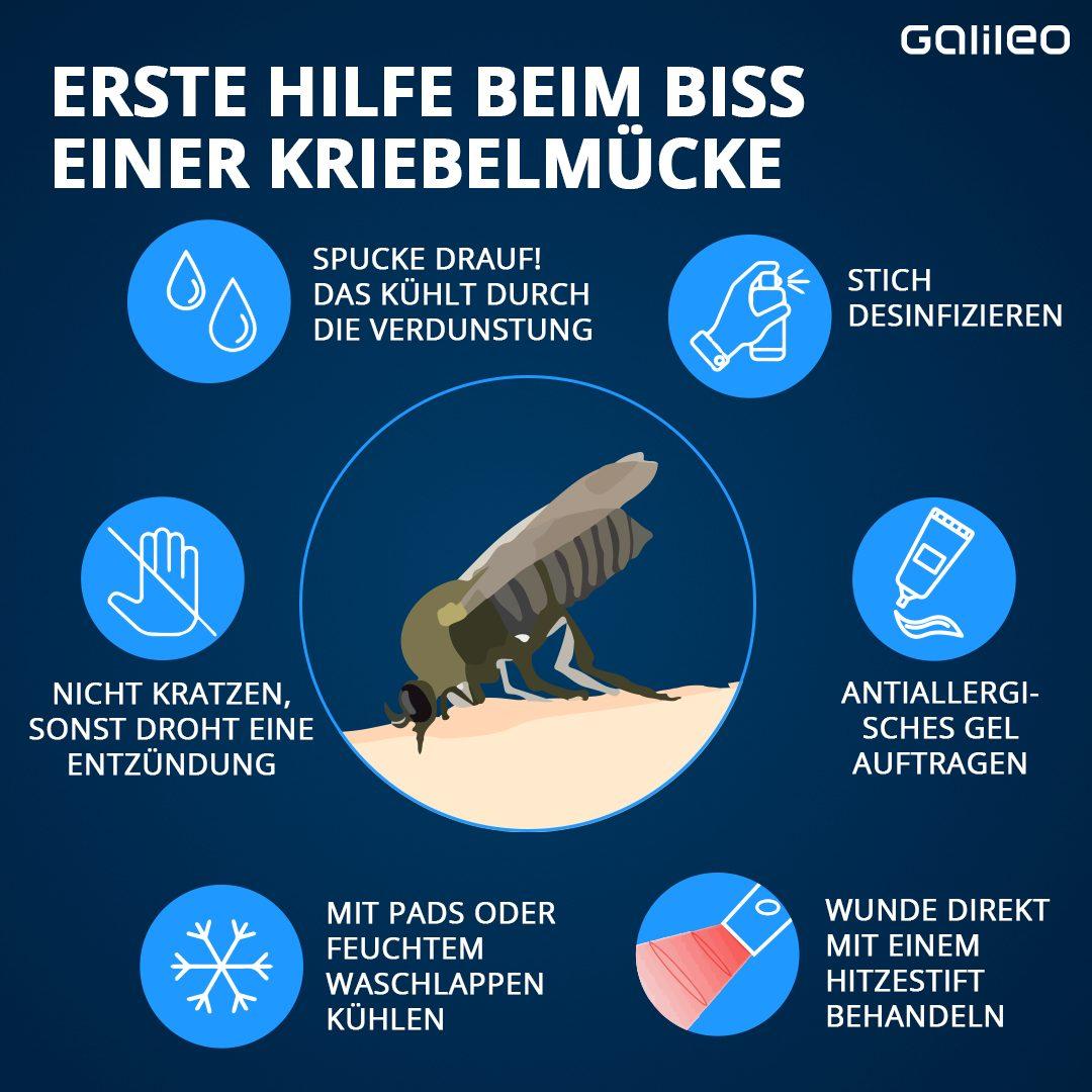 Das hilft beim Biss einer Kriebelmücke