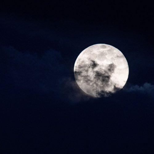 Der Mond wirkt sich nicht nur auf Ebbe und Flut aus, sondern auch auf Mensch und Natur.