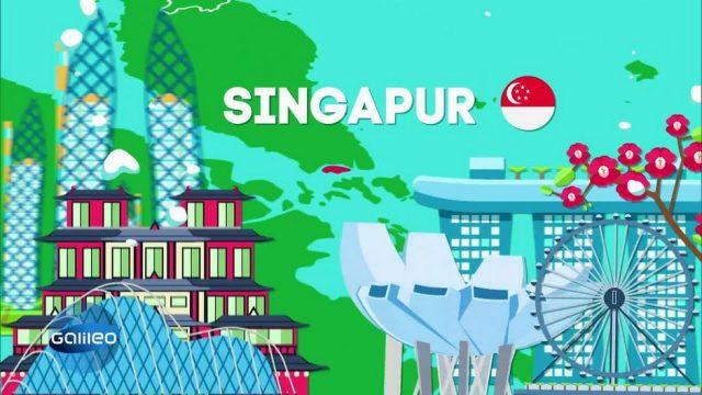 5 Dinge, auf die man in Singapur nicht verzichten kann