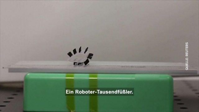 Clips der Woche: Roboter-Tausendfüßer und Goldene Woche