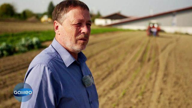 German Dream: Mit dem Verkauf von Wildblumensamen zum Erfolg