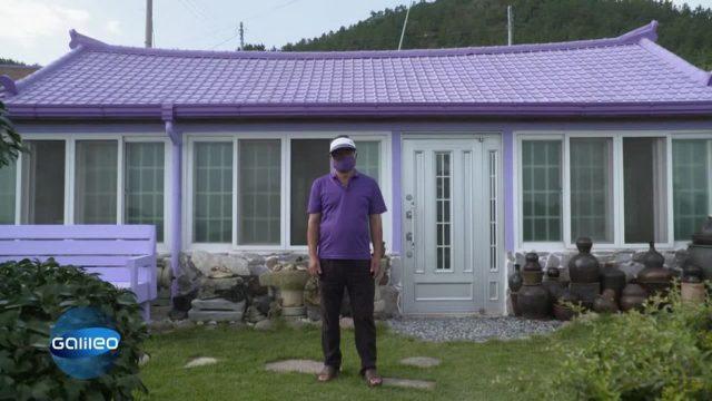 Purple Island: Darum ist in diesem Dorf alles lila