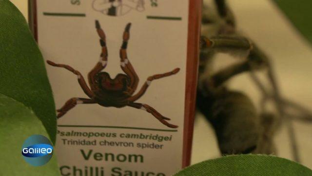 Scharfe Sauce mit Spinnengift: Echt oder nur Marketing?