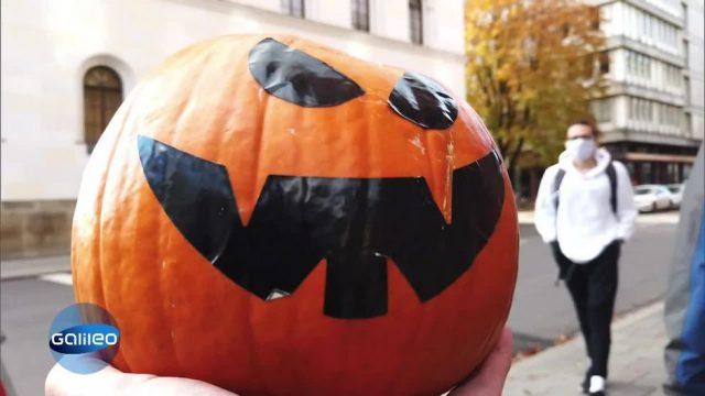 Schlaumeier: Warum feiern wir Halloween?