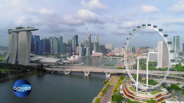 Sonntag: Smart, smarter, Singapur: Leben in der modernsten Stadt der Welt