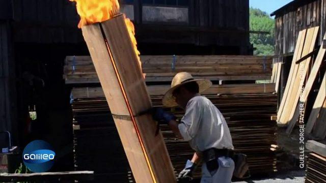 Wird dieses Holz durch Feuer stabiler?