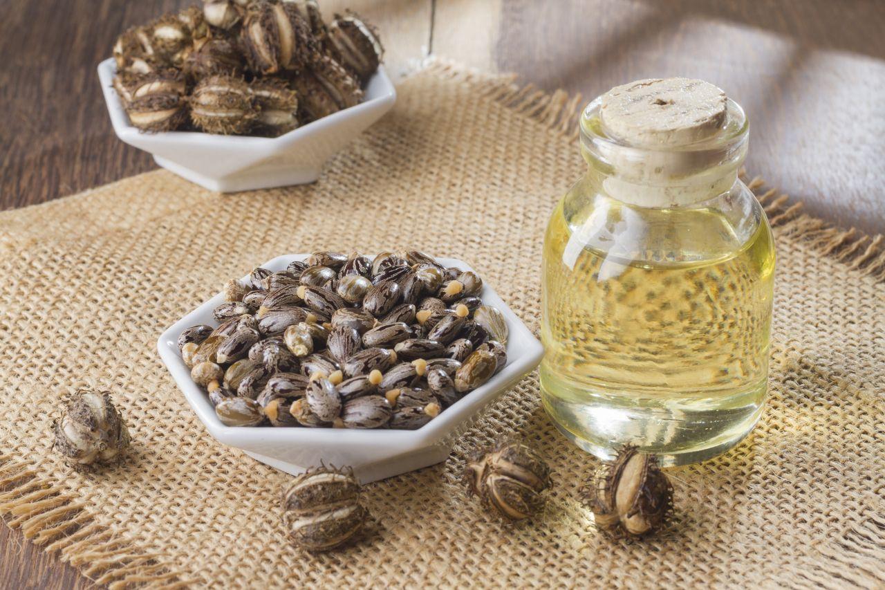 Rizinus-Bohnen und gewonnenes Öl