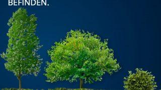Trüffel Boden Entfernung zum Baum