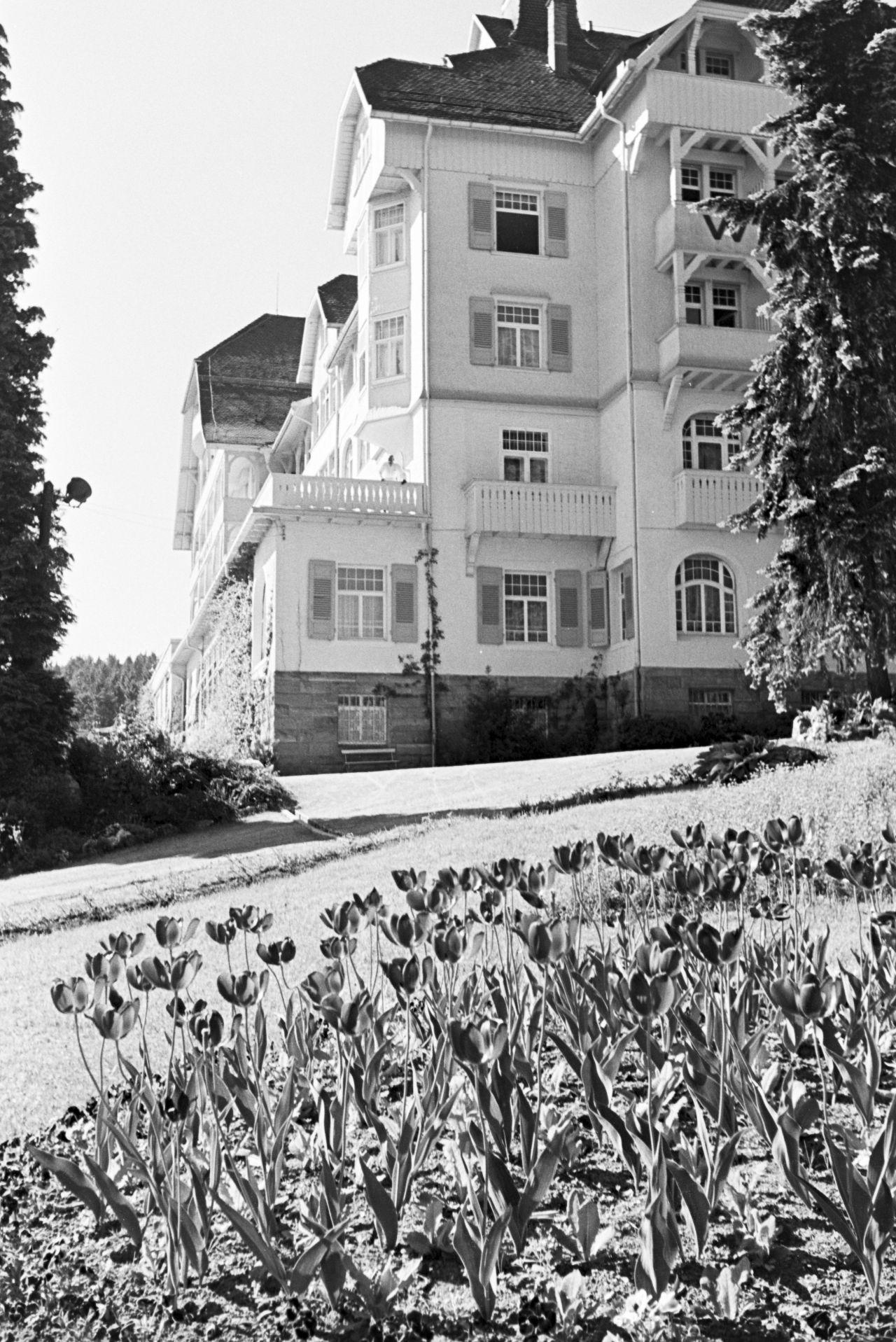 Hotel Waldlust