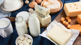 tierische Produkte liefern Vitamin B12
