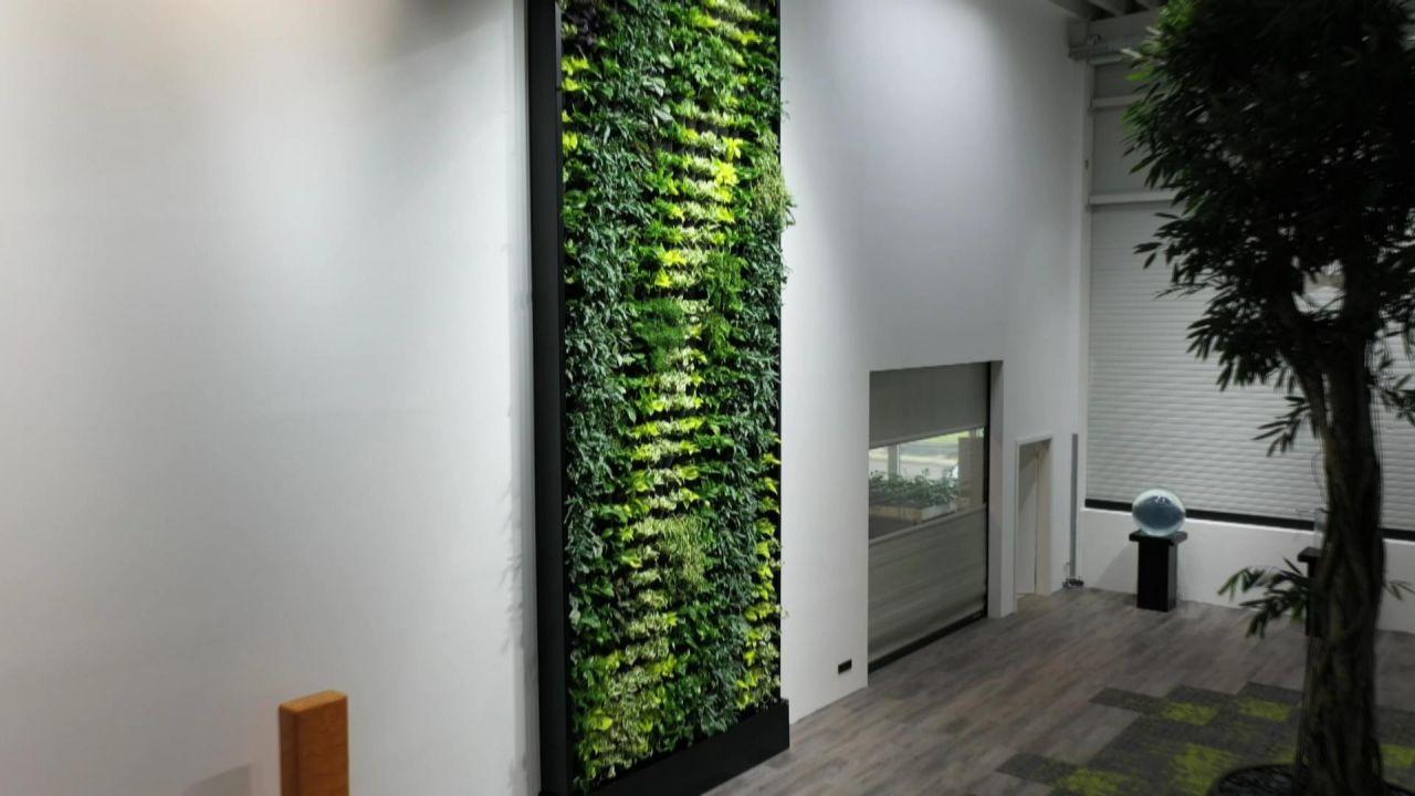 Atmende Wande Und Vertical Gardening Die Garten Der Zukunft Galileo