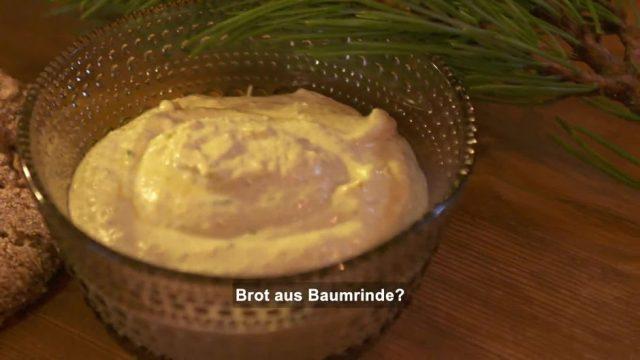 Brot backen mit Baumrinde
