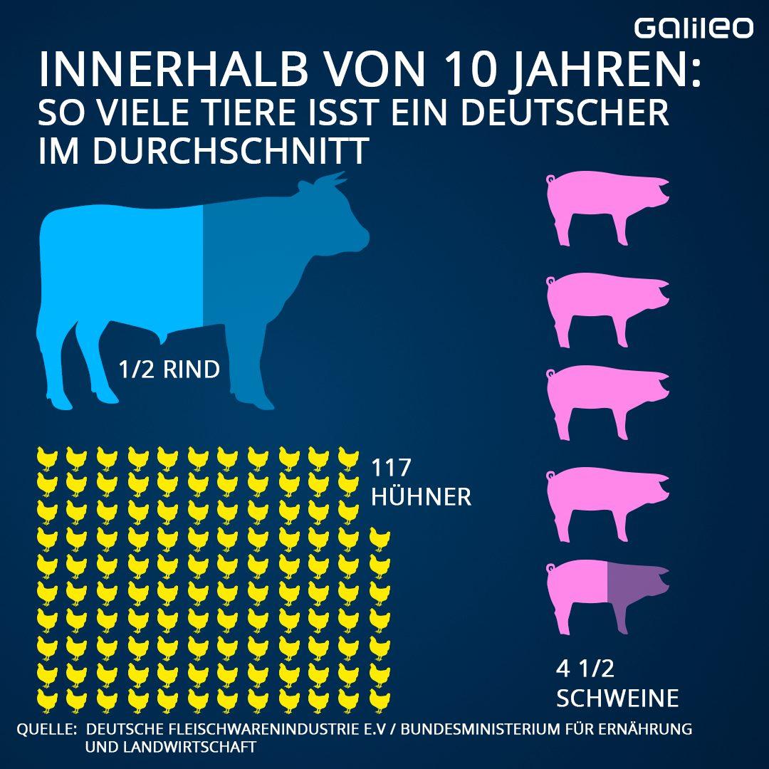 Grafik Fleischlos So viele Tiere isst ein Deutscher