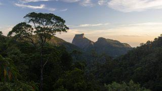 Nationalpark Tijuca