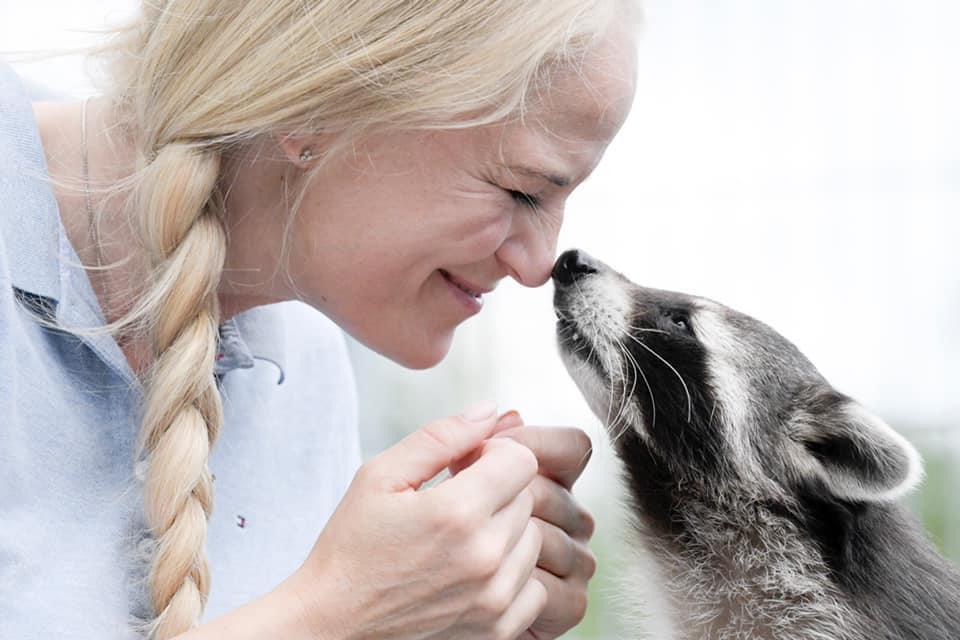 Von Wasch(-bär)echter Liebe bis Lebensgefahr: Was Tierschützer erleben