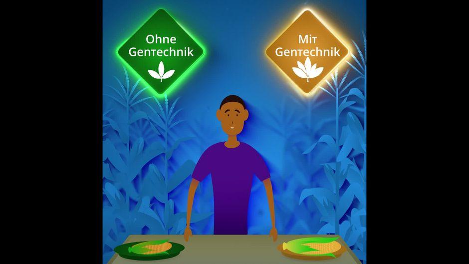 Gentechnik: Wie Organismen gentechnisch verändert werden - 10s