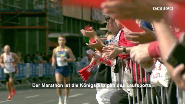 Marathon: So bereitest du dich darauf vor