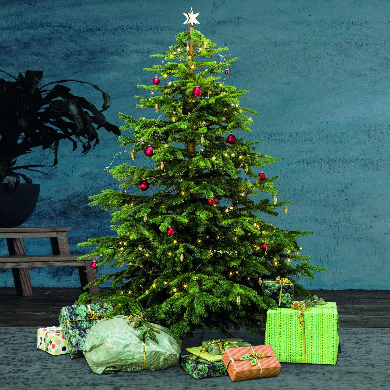 A Tännschen! Diesen Weihnachtsbaum nutzt du alle Jahre wieder
