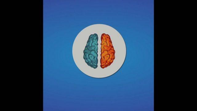 Gehirnhälften: So arbeiten sie - 10s