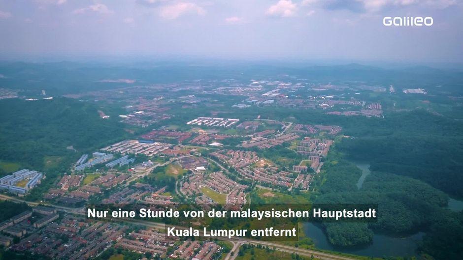 Lost Place: Vogelstadt