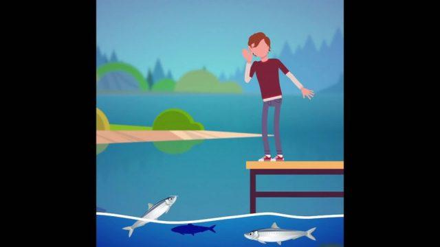 Unterwassersprache: So kommunizieren Fische - 10s
