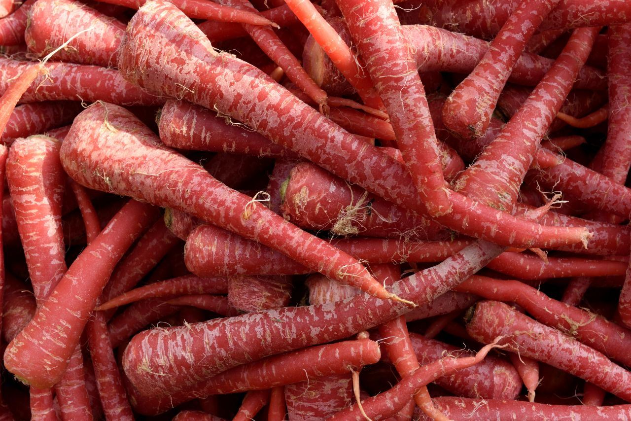 Viele rote Karotten