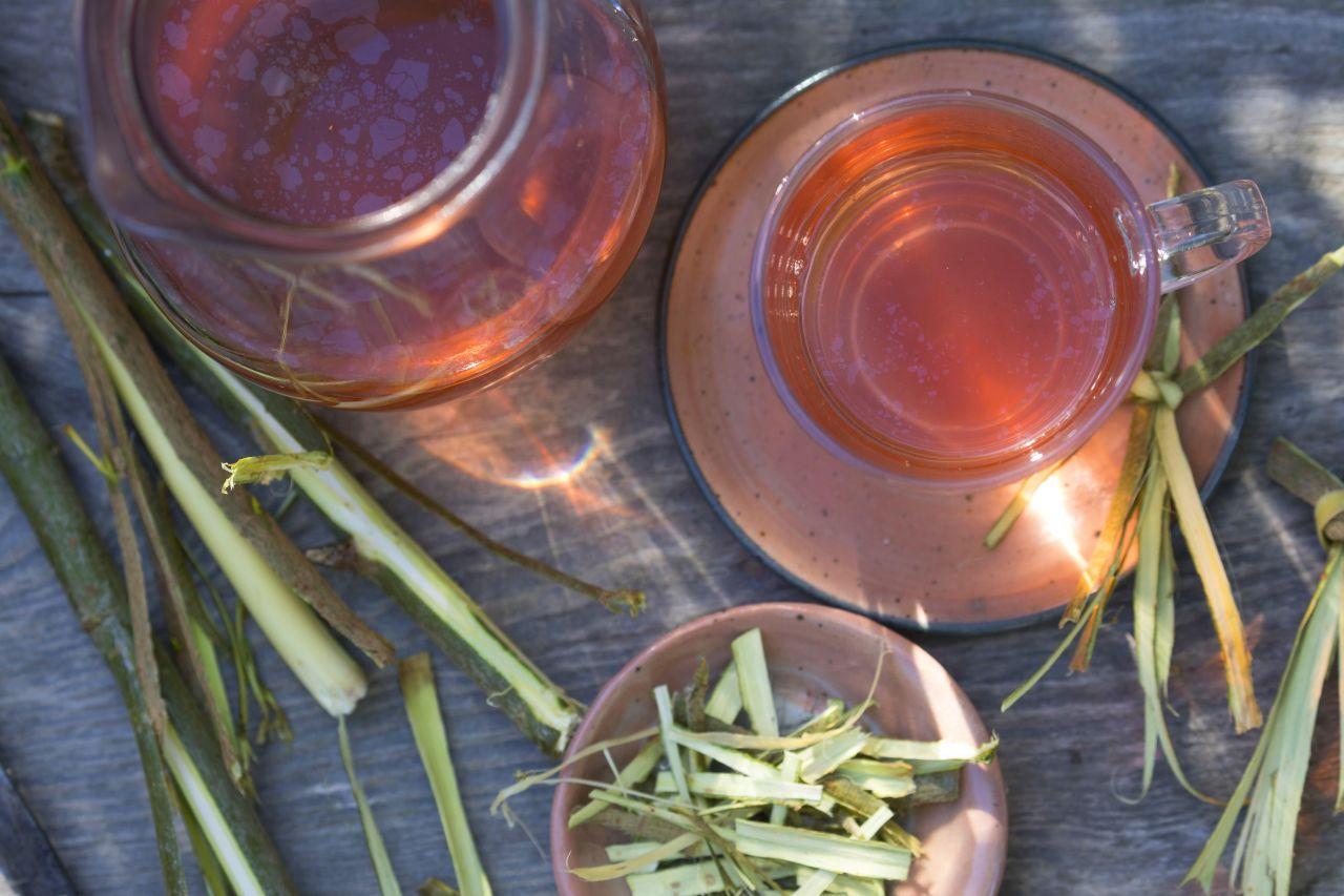 Tee aus Weidenrinde