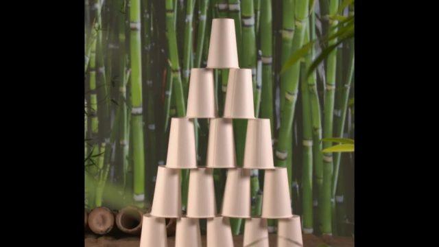 Bambus: Pflanze der Superlative - 10s