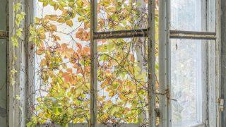 Fenster im Kinderkrankenhaus in Prpipjat in der Sperrzone