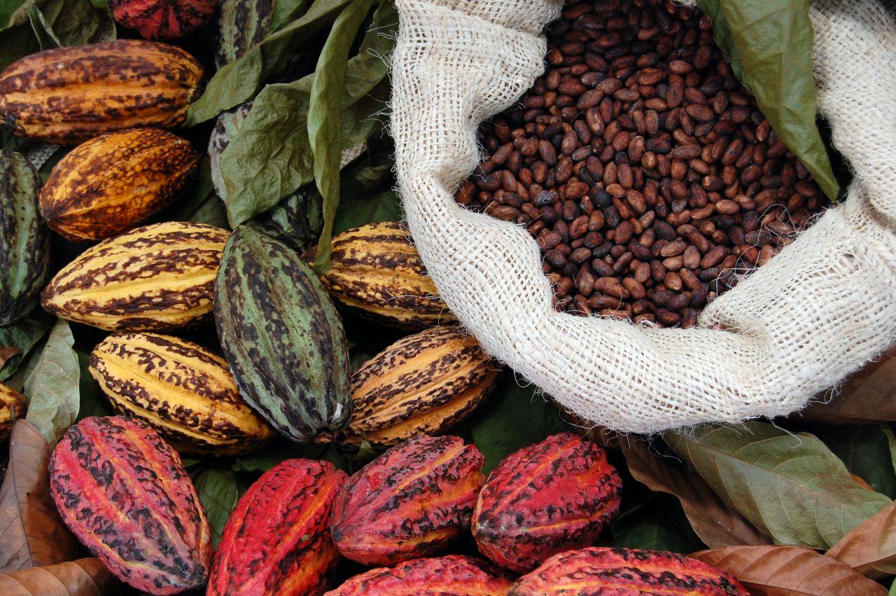 Kakao-Fruchtsaft statt Zucker: Was steckt hinter dem Hype?