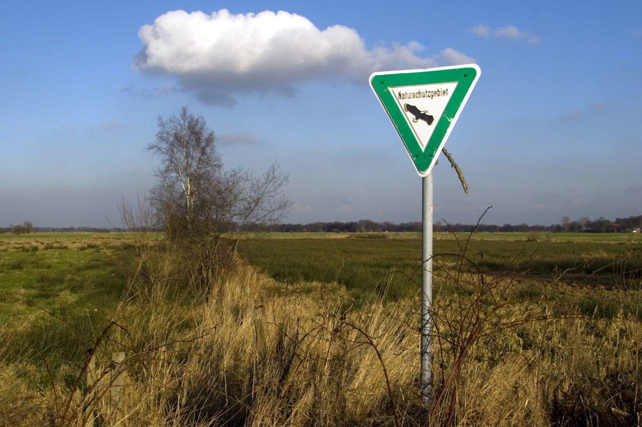 Naturschutzgebiete in Deutschland: Schutz für die sensiblen Paradiese