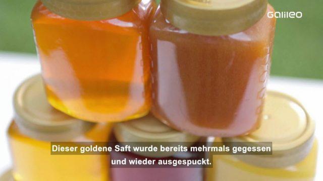 Süßes Naturtalent: Honig