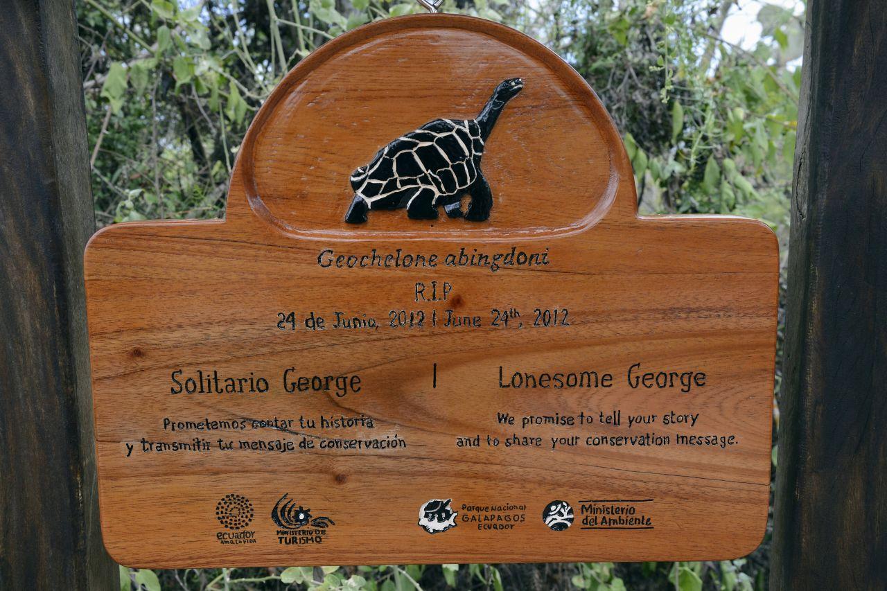 Es gibt eie Gedenktafel für die letzte Riesenschildkröte Lonesome George