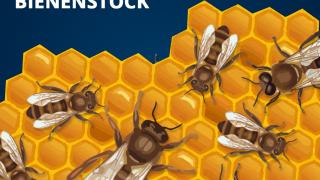 Bienenberufe: Arbeiterinnen, Königin, Drohnen