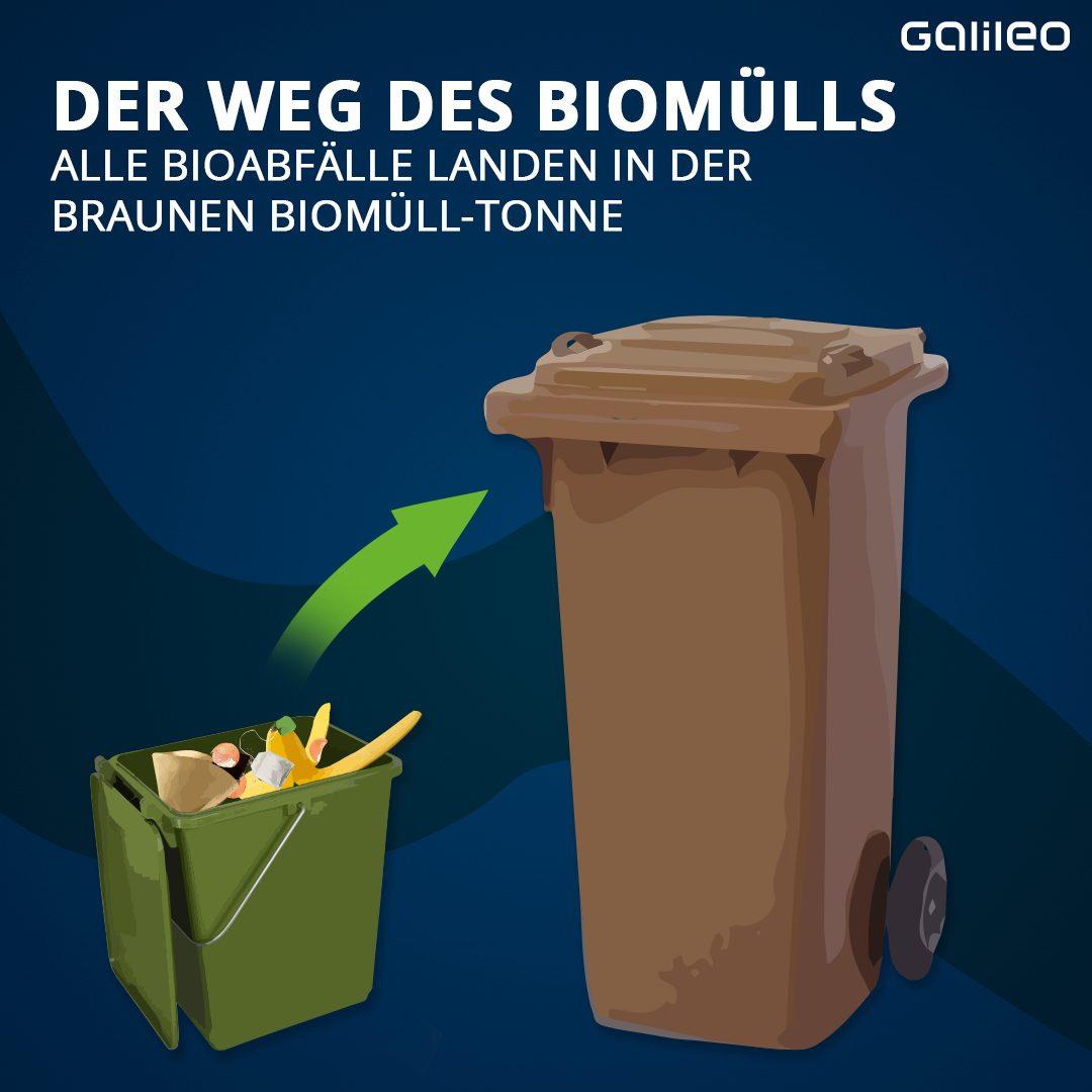 Biomüll wird entsorgt
