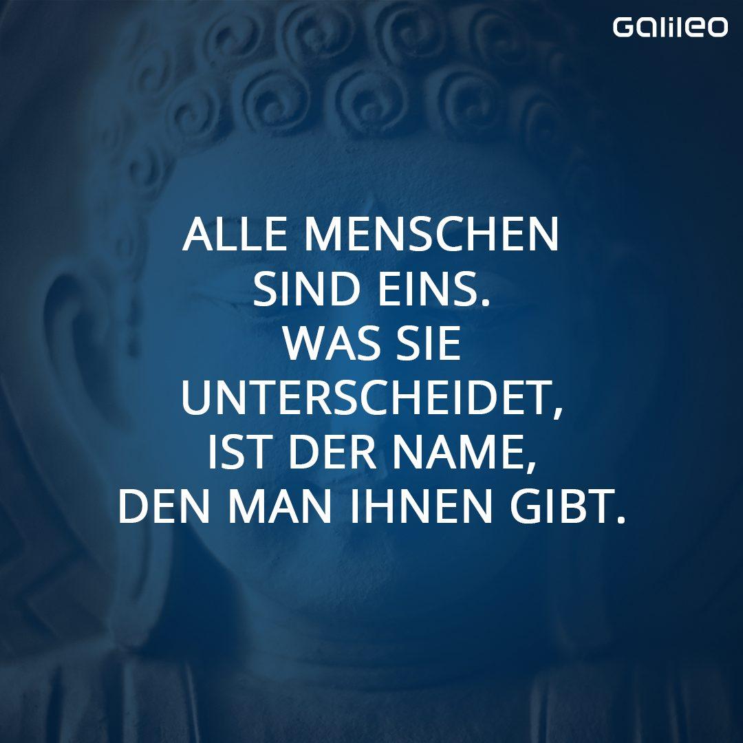 Zitat Buddhismus