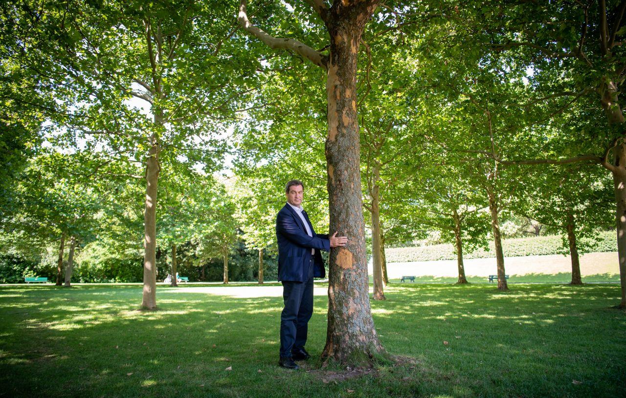 Markus Söder zusammen mit einem Baum hinter der Staatskanzlei in München 2019