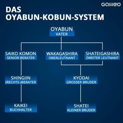 Grafik Hierarchie der Yakuza