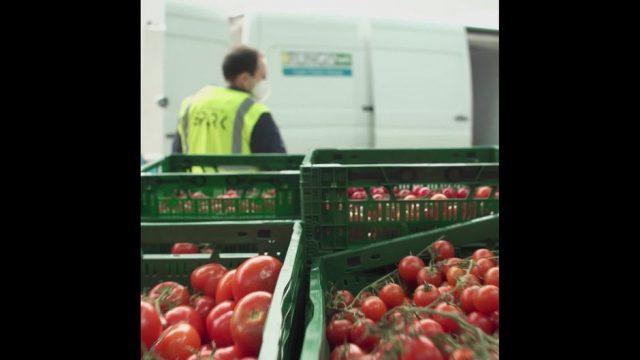 Moderne Lebensmittelrettung: Scan-App und Künstliche Intelligenz - 10s