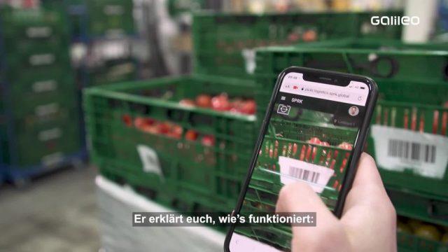 Moderne Lebensmittelrettung: Scan-App und Künstliche Intelligenz